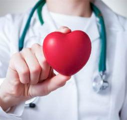 nurse holding a heart shaped object